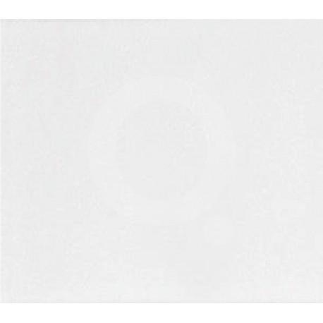 Queràmic Blanc 20x30 Mat