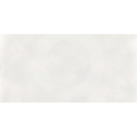 Europe White 30x60 Rectificado